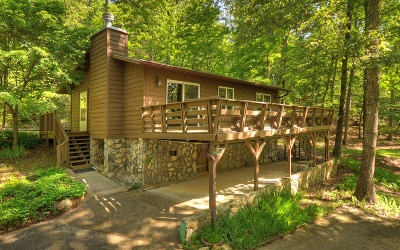 Blue Ridge Single Family Home For Sale: 36 Mill Creek Acres