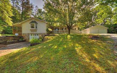 Blue Ridge Single Family Home For Sale: 11 Johns Ridge