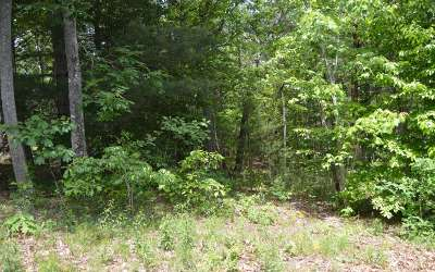 Residential Lots & Land For Sale: Maple Springs Lot 11