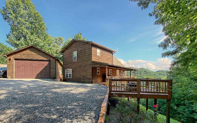 Hayesville Single Family Home For Sale: 452 White Pine Ridge