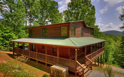Mineral Bluff Single Family Home For Sale: 144 Humphrey Heights Rd