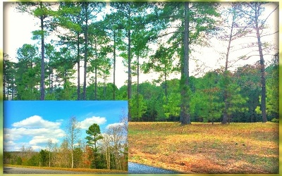 Blairsville Residential Lots & Land For Sale: Lt 62 The Sanctuary