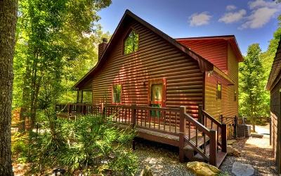 Blairsville Single Family Home For Sale: 10 Cherry Lea Lane