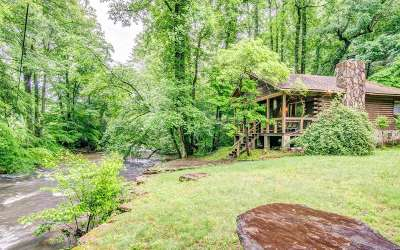 Blue Ridge Single Family Home For Sale: 994 Hwy 2