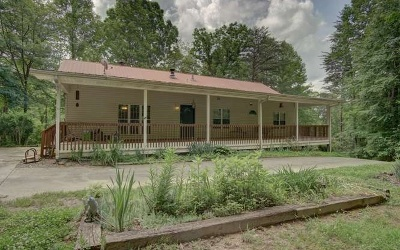 Ellijay Single Family Home For Sale: 701 Lost Forest Rd