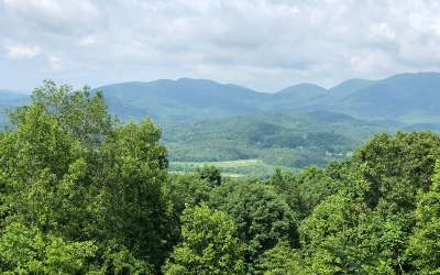 Young Harris Residential Lots & Land For Sale: Tr 1c Mining Gap Rd