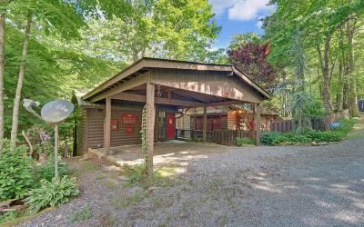Blue Ridge Single Family Home For Sale: 132 N Cherokee Drive