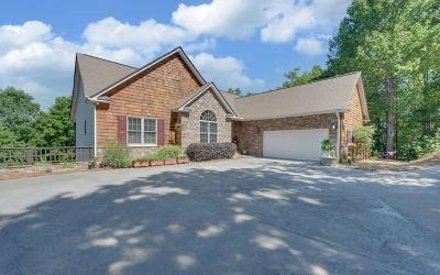 Hiawassee Single Family Home For Sale: 883 Ramey Mountain Road