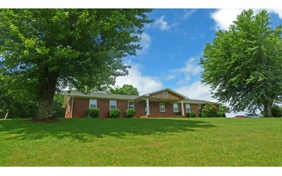 Union County Single Family Home For Sale: 196 Hilltop View
