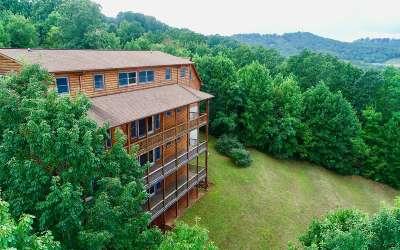 Towns County Single Family Home For Sale: 1145 Buckeye Lane