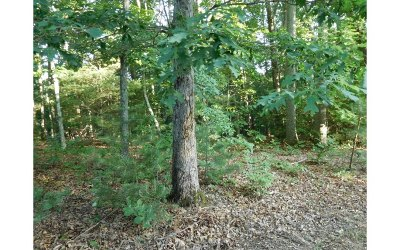 Blairsville GA Residential Lots & Land For Sale: $19,500