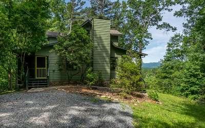 Blue Ridge Single Family Home For Sale: 390 Moss Ln