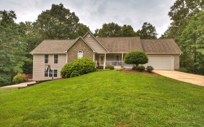 Ellijay Single Family Home For Sale: 545 Yukon Road