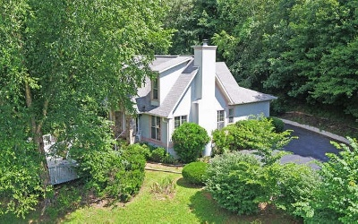 Blairsville Single Family Home For Sale: 256 Collins Lane
