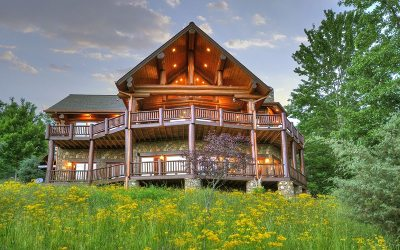 Mineral Bluff Single Family Home For Sale: 352 Endless View Road
