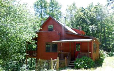 Blairsville Single Family Home For Sale: 218 Knights Gap