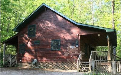 Blue Ridge Single Family Home For Sale: 65 Ridgeside Dr
