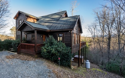 Blue Ridge Single Family Home For Sale: 151 Fox Mountain Crossin