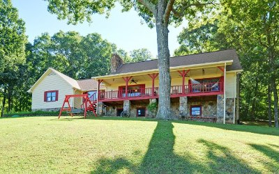 Blairsville Single Family Home For Sale: 2938 Town Creek School