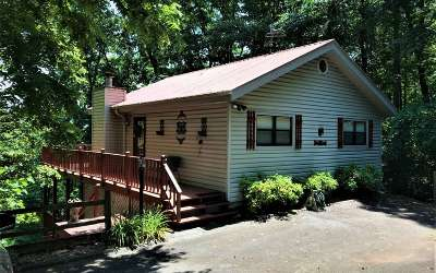 Hiawassee Single Family Home For Sale: 1130 Frog Pond Rd