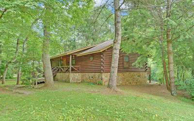 Blue Ridge Single Family Home For Sale: 2223 Dial Road