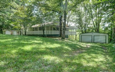 Brasstown Single Family Home For Sale: 484 Weber Way