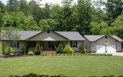 Hiawassee Single Family Home For Sale: 900 Sunnyside Road