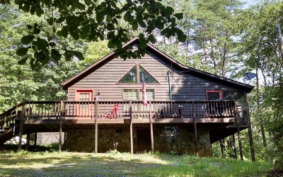 Mineral Bluff Single Family Home For Sale: 334 Oak Loop