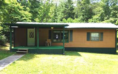 Fannin County Single Family Home For Sale: 98 Ridgeview Road
