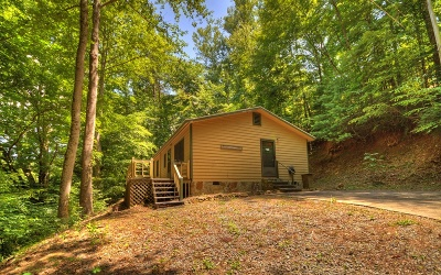 Blue Ridge Single Family Home For Sale: 2000 Aska Road