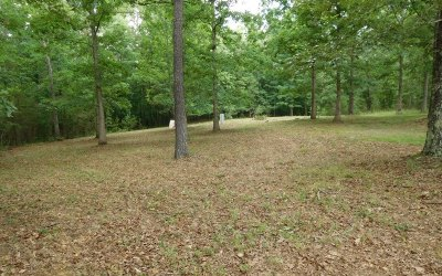 Blairsville GA Residential Lots & Land For Sale: $115,000