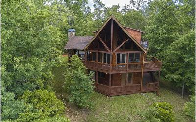 Blue Ridge Single Family Home For Sale: 151 Sunrise Gap