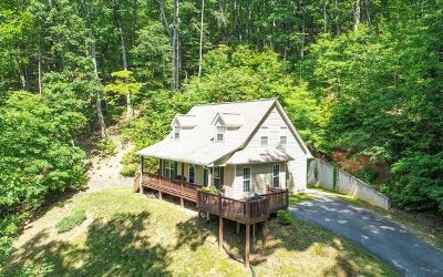 Blairsville Single Family Home For Sale: 177 Kim Street