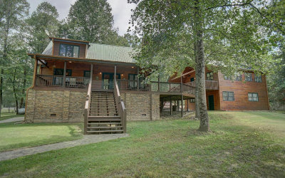 Mineral Bluff Single Family Home For Sale: 934 Fish Trap