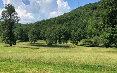Blairsville Residential Lots & Land For Sale: 9acre Wolfstake Road