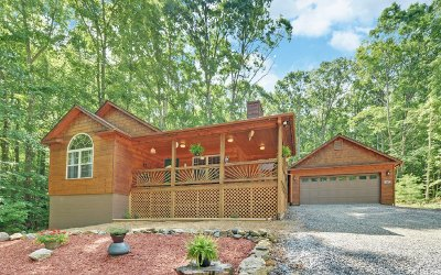 Blairsville Single Family Home For Sale: 81 Penny Lane