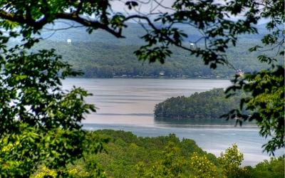 Blue Ridge Single Family Home For Sale: 715 Ripshin Mountain