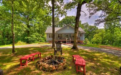 Mineral Bluff Single Family Home For Sale: 315 Wolf Creek Trail