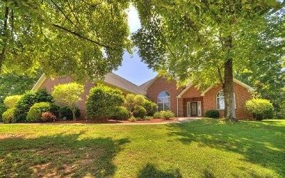 Ellijay Single Family Home For Sale: 865 The Oaks Drive