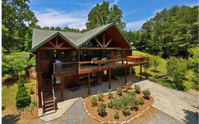 Blue Ridge Single Family Home For Sale: 170 Dockery Lane