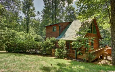 Blue Ridge Single Family Home For Sale: 352 Millstone Mtn Lane