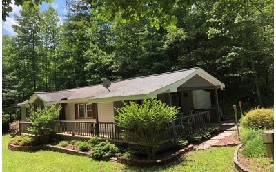 Blairsville Single Family Home For Sale: 233 Timber Blossom Dr.