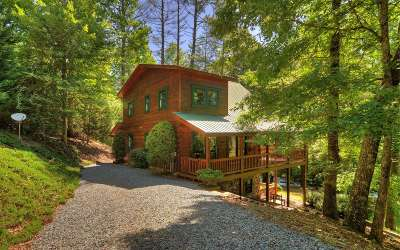 Suches Single Family Home For Sale: 668 White Pine Trail