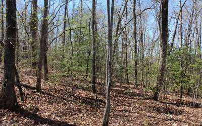 Hayesville Residential Lots & Land For Sale: Penland Trail