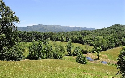 Hayesville Residential Lots & Land For Sale: 224 Prince Road