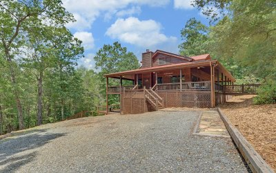 Blue Ridge Single Family Home For Sale: 445 Scenic Mountain View