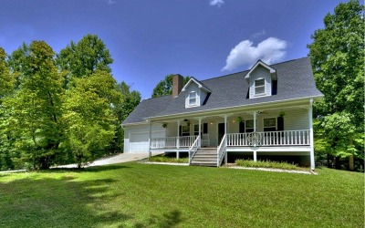 Blairsville Single Family Home For Sale: 4652 Pat Colwell Road