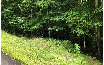 Ellijay Residential Lots & Land For Sale: Lt578 Tonto Dr