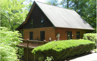 Blue Ridge Single Family Home For Sale: 57 Twin Creeks