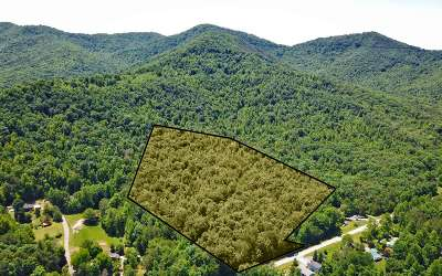 Blairsville Residential Lots & Land For Sale: 17 Ac Gum Log Rd